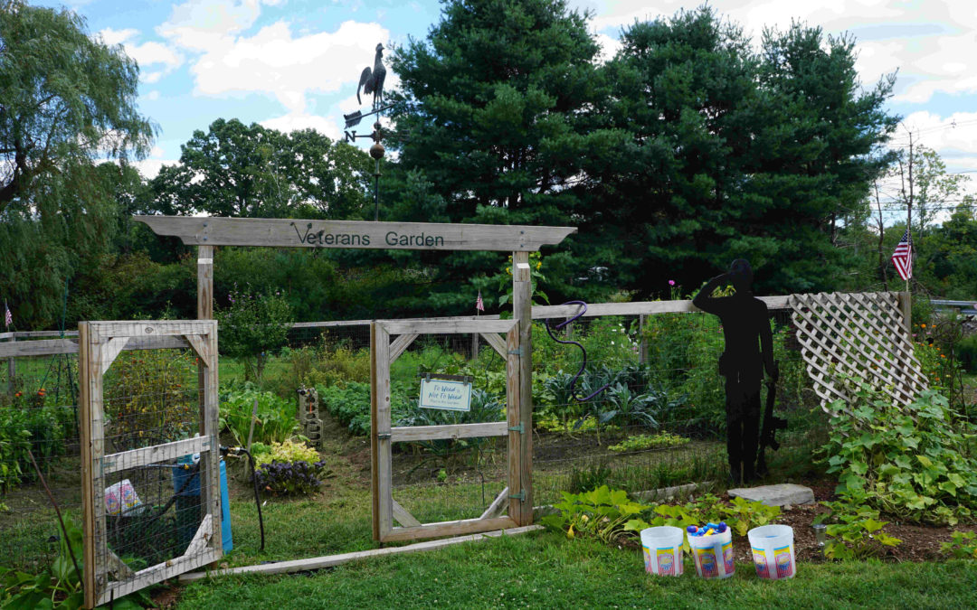 Afternoon Cookout at Veterans Garden – 08/30/20